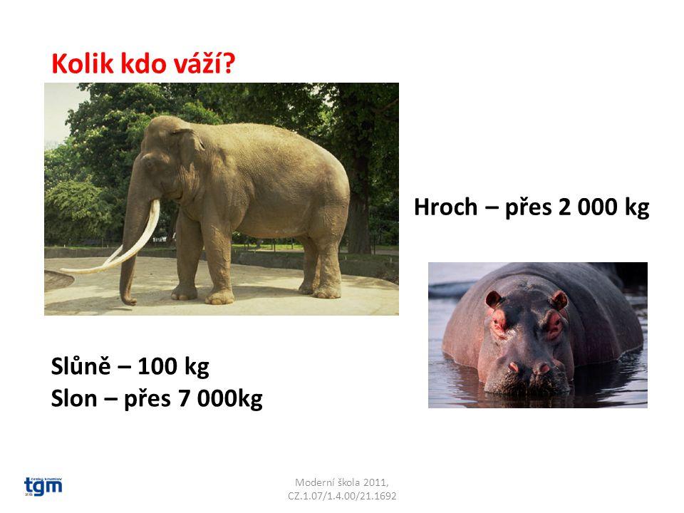 Moderní škola 2011, CZ.1.07/1.4.00/21.1692 Kolik kdo váží? Slůně – 100 kg Slon – přes 7 000kg Hroch – přes 2 000 kg