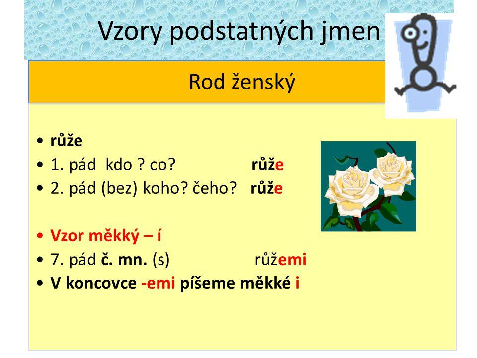 Vzory podstatných jmen Rod ženský růže 1. pád kdo ? co? růže 2. pád (bez) koho? čeho? růže Vzor měkký – í 7. pád č. mn. (s) růžemi V koncovce -emi píš