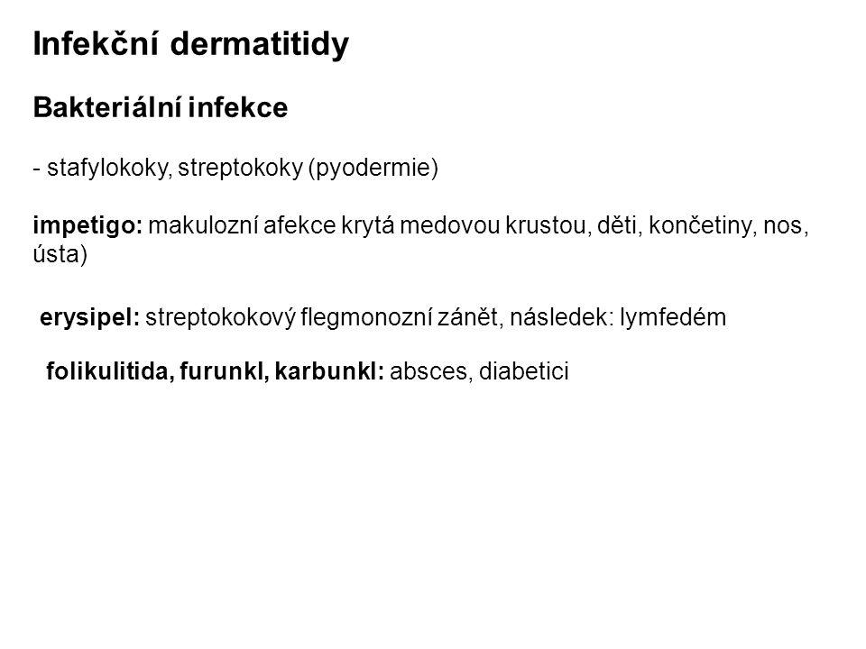 Infekční dermatitidy Bakteriální infekce - stafylokoky, streptokoky (pyodermie) impetigo: makulozní afekce krytá medovou krustou, děti, končetiny, nos, ústa) erysipel: streptokokový flegmonozní zánět, následek: lymfedém folikulitida, furunkl, karbunkl: absces, diabetici