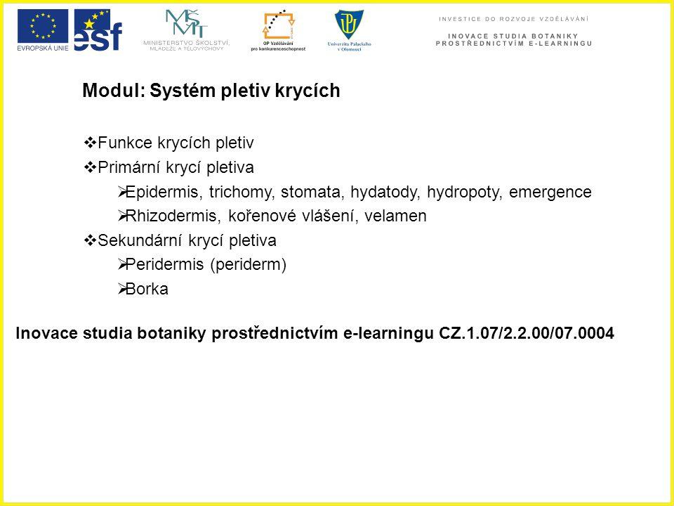 Modul: Systém pletiv krycích  Funkce krycích pletiv  Primární krycí pletiva  Epidermis, trichomy, stomata, hydatody, hydropoty, emergence  Rhizode