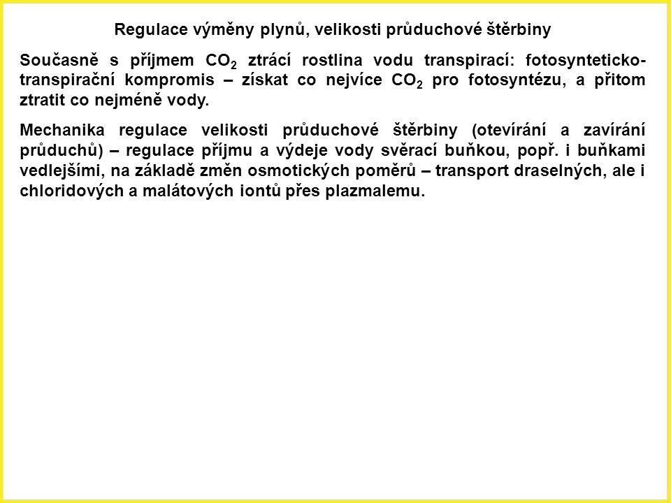 Regulace výměny plynů, velikosti průduchové štěrbiny Současně s příjmem CO 2 ztrácí rostlina vodu transpirací: fotosynteticko- transpirační kompromis