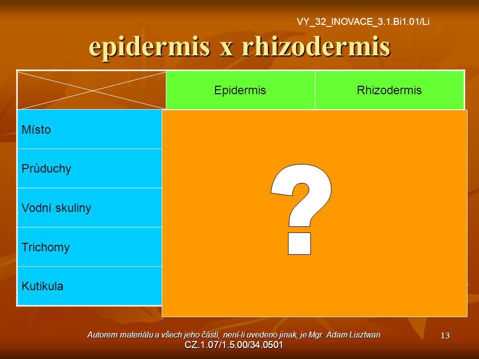 epidermis x rhizodermis EpidermisRhizodermis MístoStonek, listKořen PrůduchyAnoNe Vodní skulinyAnoNe TrichomyAnoNe.