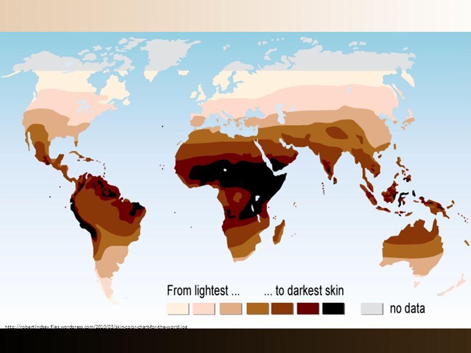 http://robertlindsay.files.wordpress.com/2010/03/skin-color-chart-for-the-world.jpg