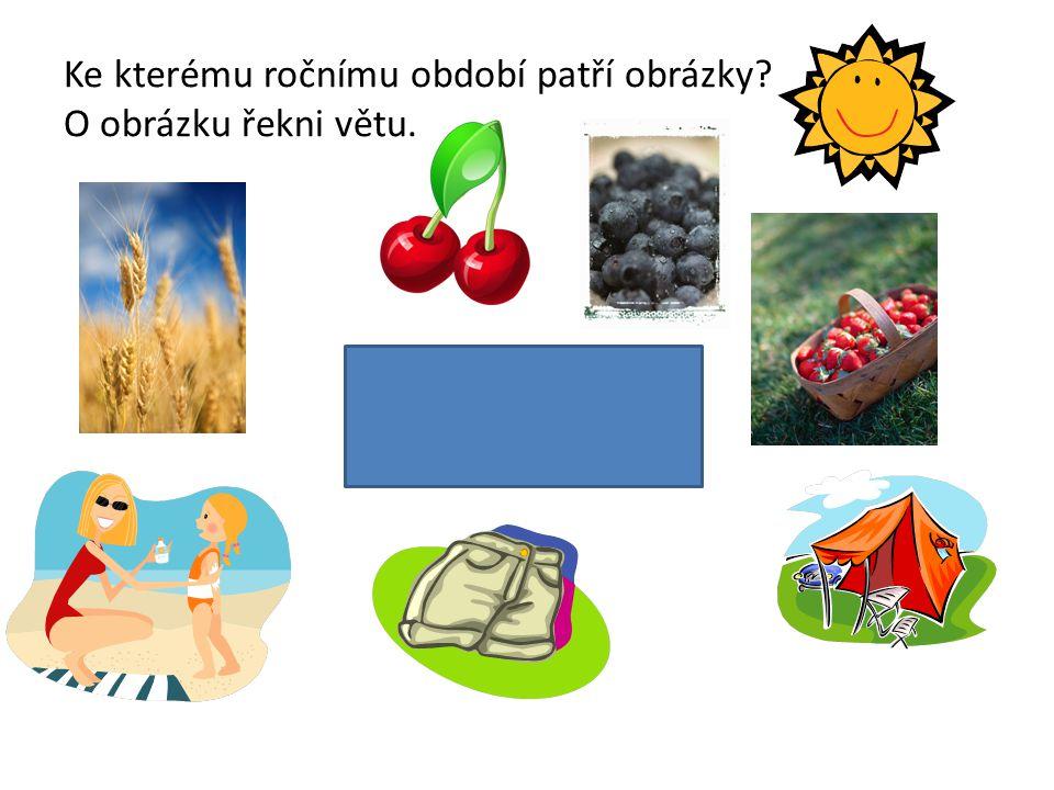Ke kterému ročnímu období patří obrázky? O obrázku řekni větu. L É T O