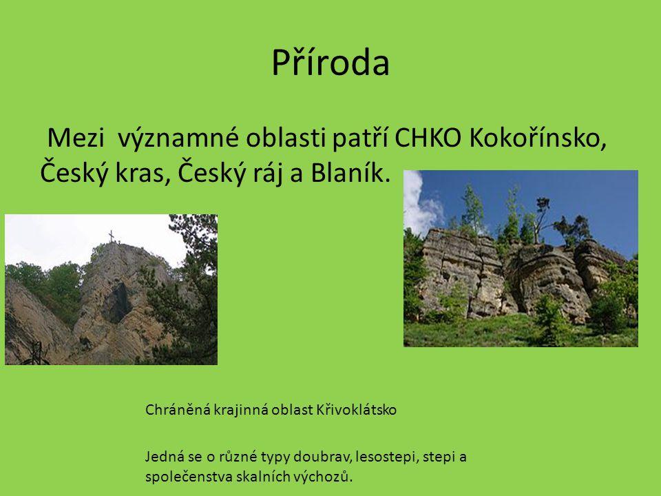 Příroda Mezi významné oblasti patří CHKO Kokořínsko, Český kras, Český ráj a Blaník.