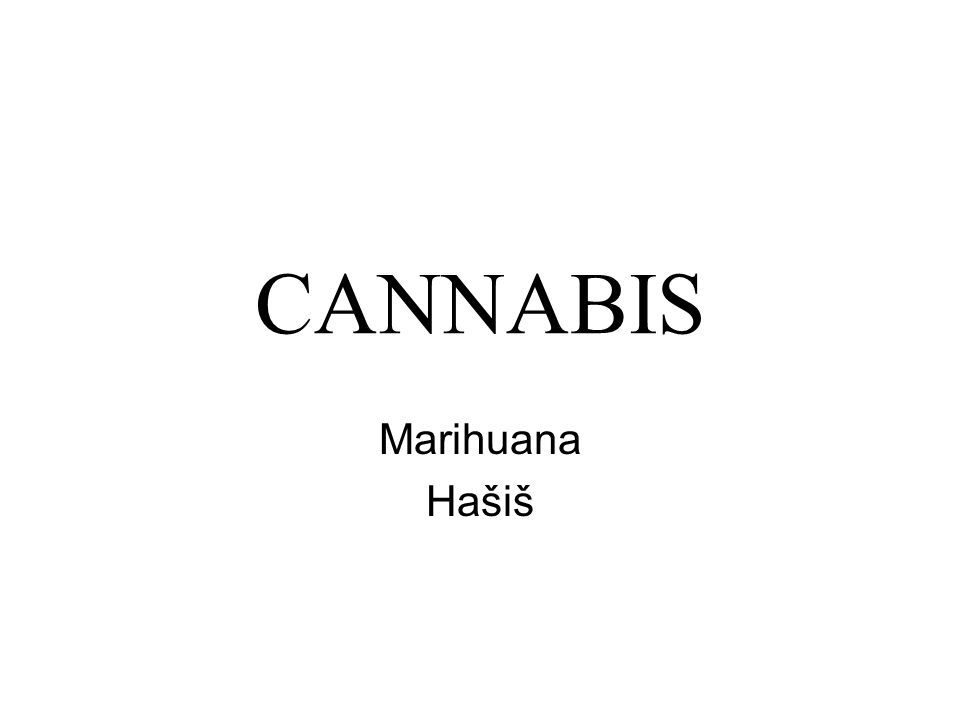CANNABIS Marihuana Hašiš