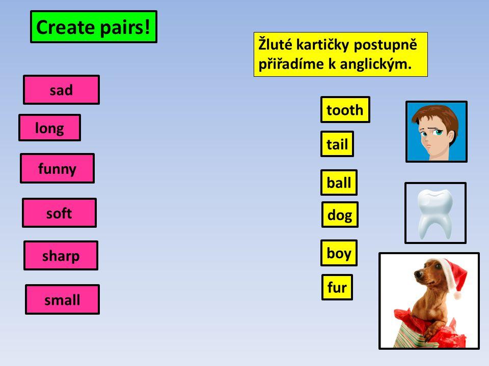 Create pairs.