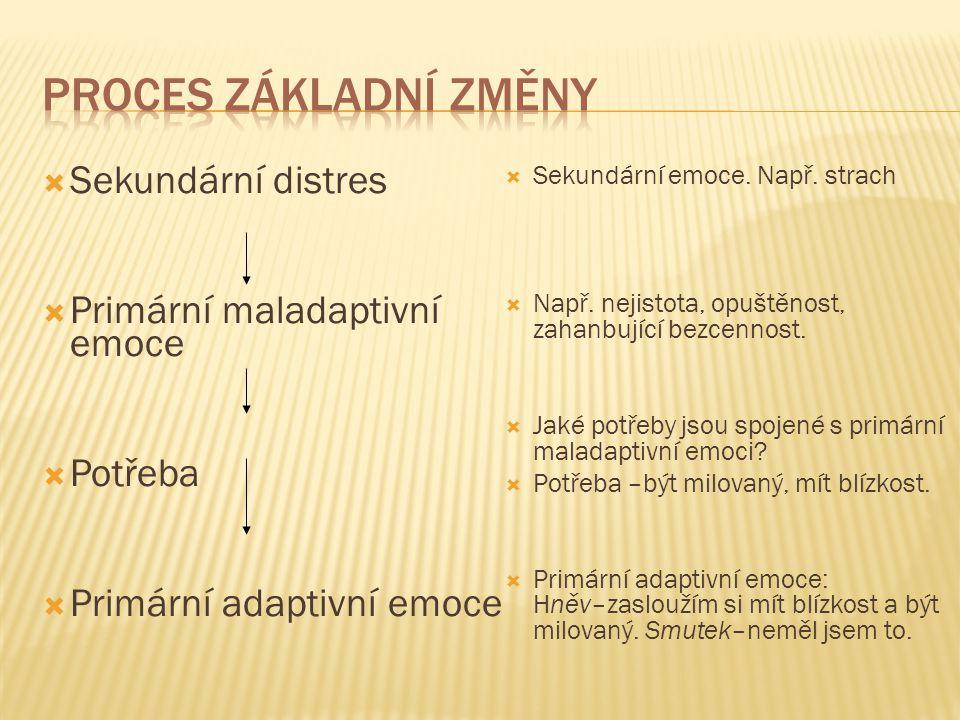  Sekundární distres  Primární maladaptivní emoce  Potřeba  Primární adaptivní emoce  Sekundární emoce. Např. strach  Např. nejistota, opuštěnost