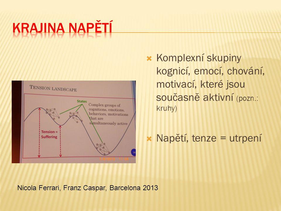  Komplexní skupiny kognicí, emocí, chování, motivací, které jsou současně aktivní (pozn.: kruhy)  Napětí, tenze = utrpení Nicola Ferrari, Franz Casp