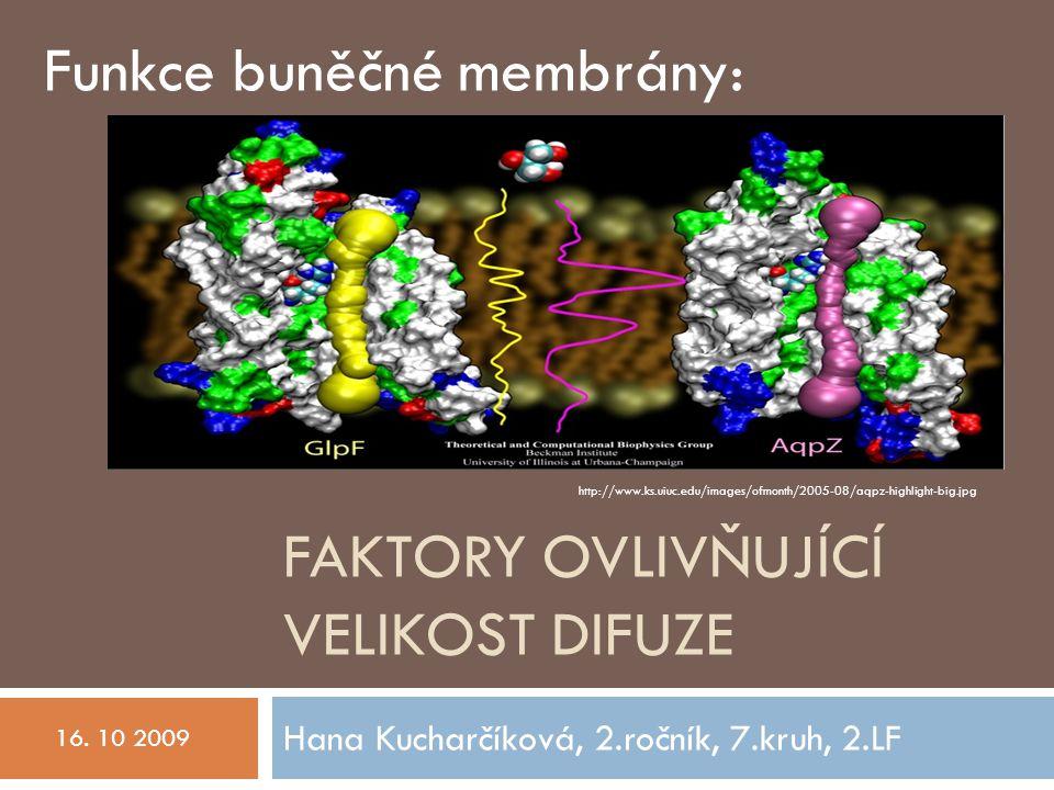 FAKTORY OVLIVŇUJÍCÍ VELIKOST DIFUZE Hana Kucharčíková, 2.ročník, 7.kruh, 2.LF 16.