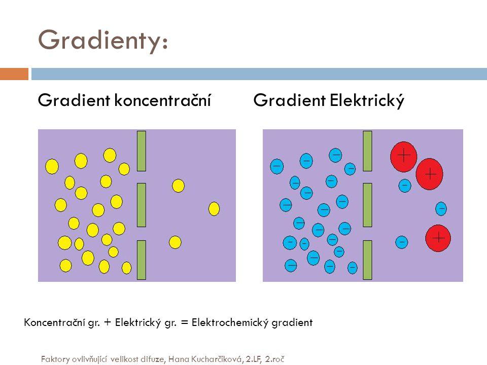 Gradienty: Gradient koncentrační Gradient Elektrický Koncentrační gr.