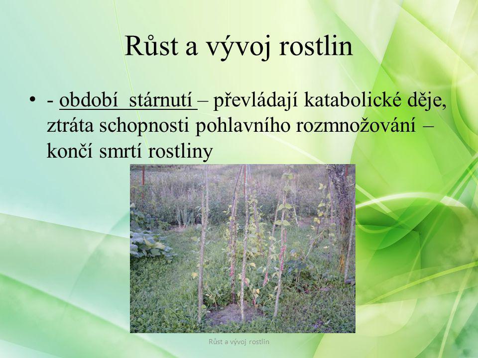 - období stárnutí – převládají katabolické děje, ztráta schopnosti pohlavního rozmnožování – končí smrtí rostliny Růst a vývoj rostlin