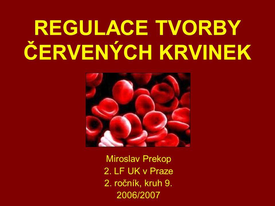 REGULACE TVORBY ČERVENÝCH KRVINEK Miroslav Prekop 2. LF UK v Praze 2. ročník, kruh 9. 2006/2007