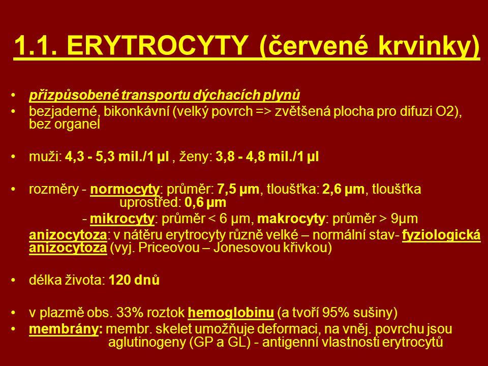 1.1. ERYTROCYTY (červené krvinky) přizpůsobené transportu dýchacích plynů bezjaderné, bikonkávní (velký povrch => zvětšená plocha pro difuzi O2), bez