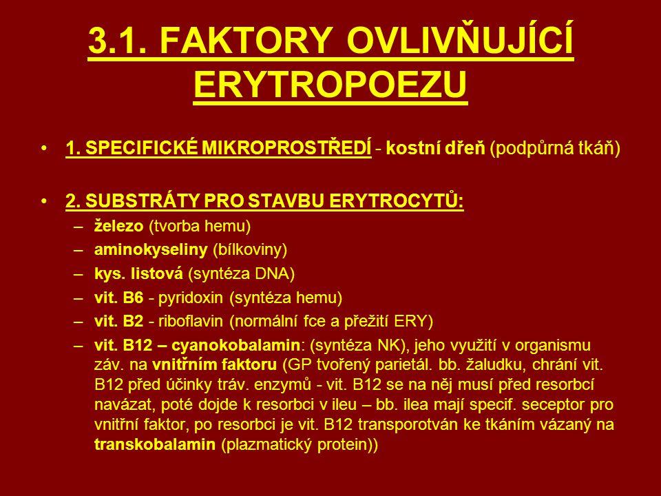 3.1. FAKTORY OVLIVŇUJÍCÍ ERYTROPOEZU 1. SPECIFICKÉ MIKROPROSTŘEDÍ - kostní dřeň (podpůrná tkáň) 2. SUBSTRÁTY PRO STAVBU ERYTROCYTŮ: –železo (tvorba he