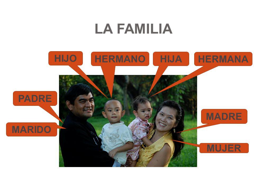 LA FAMILIA MADRE PADRE HIJO HIJA MUJER MARIDO HERMANO HERMANA