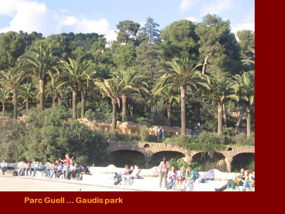 Parc Guell... Gaudis park