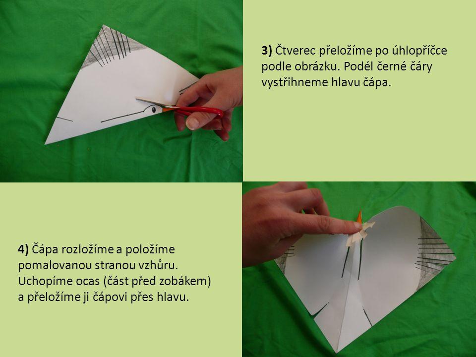 3) Čtverec přeložíme po úhlopříčce podle obrázku. Podél černé čáry vystřihneme hlavu čápa. 4) Čápa rozložíme a položíme pomalovanou stranou vzhůru. Uc