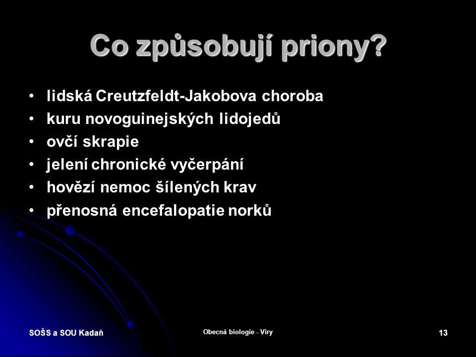 """SOŠS a SOU Kadaň Obecná biologie - Viry 12 Priony Prion (někdy označovaný """"infekční bílkovina ) je název pro vadnou formu tzv."""
