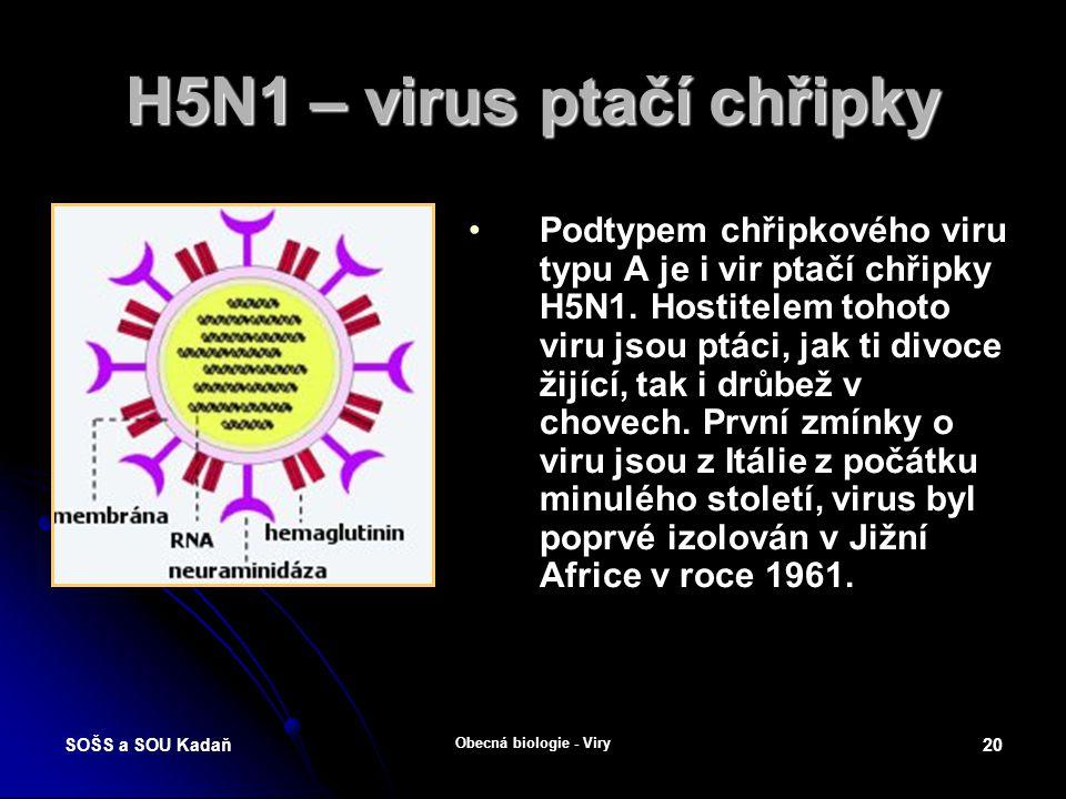 SOŠS a SOU Kadaň Obecná biologie - Viry 19 Ptačí chřipka