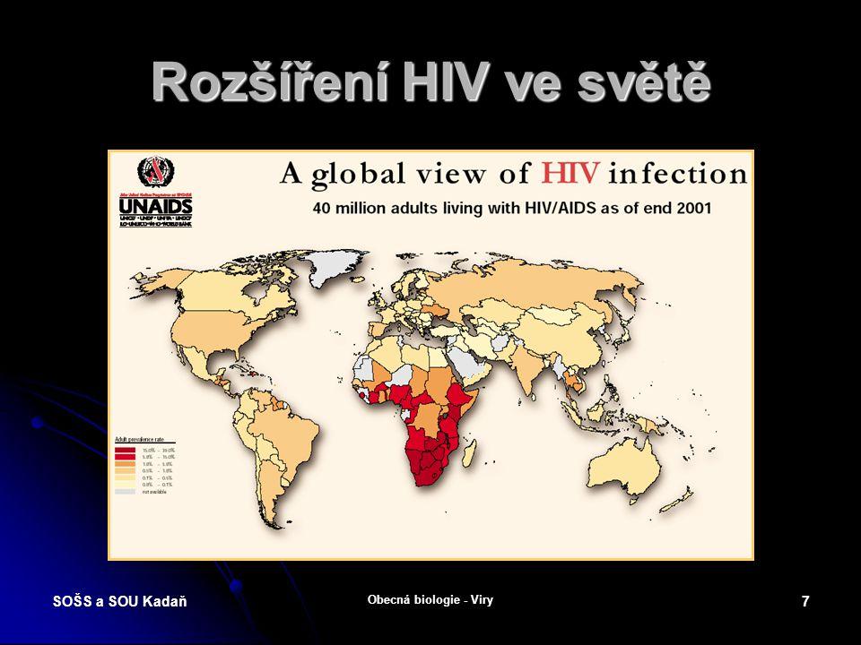 SOŠS a SOU Kadaň Obecná biologie - Viry 6 Virus HIV pod elektronovým mikroskopem