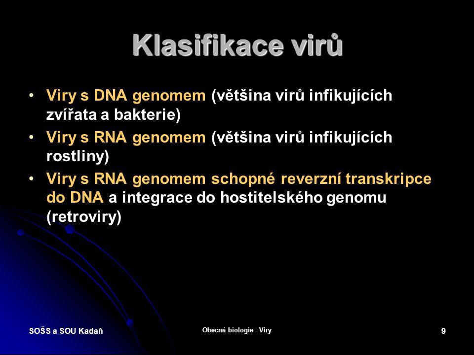 SOŠS a SOU Kadaň Obecná biologie - Viry 8 Replikace viru Viry nejsou schopny se bez hostitelské buňky reprodukovat.