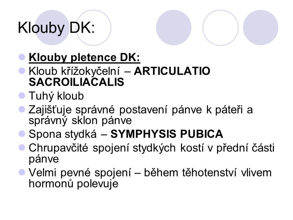 Klouby DK: Klouby pletence DK: Kloub křížokyčelní – ARTICULATIO SACROILIACALIS Tuhý kloub Zajišťuje správné postavení pánve k páteři a správný sklon p