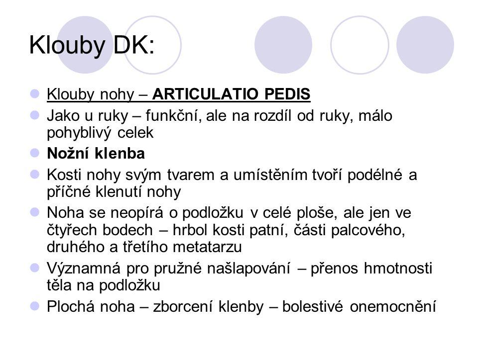 Klouby DK: Klouby nohy – ARTICULATIO PEDIS Jako u ruky – funkční, ale na rozdíl od ruky, málo pohyblivý celek Nožní klenba Kosti nohy svým tvarem a um