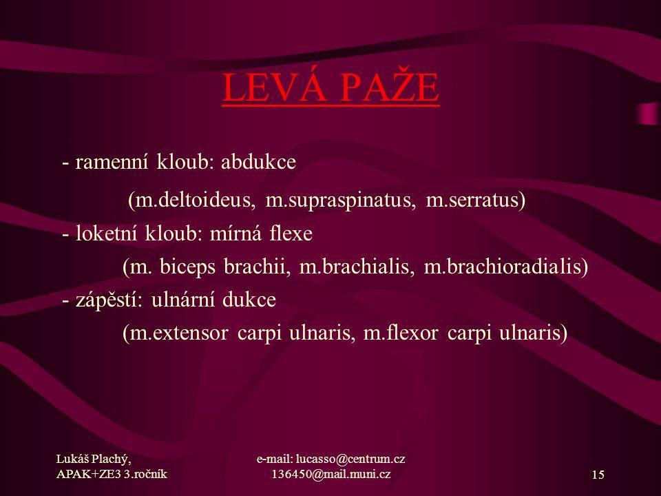 Lukáš Plachý, APAK+ZE3 3.ročník e-mail: lucasso@centrum.cz 136450@mail.muni.cz15 LEVÁ PAŽE - ramenní kloub: abdukce (m.deltoideus, m.supraspinatus, m.