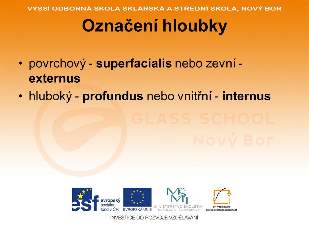 Označení hloubky povrchový - superfacialis nebo zevní - externus hluboký - profundus nebo vnitřní - internus
