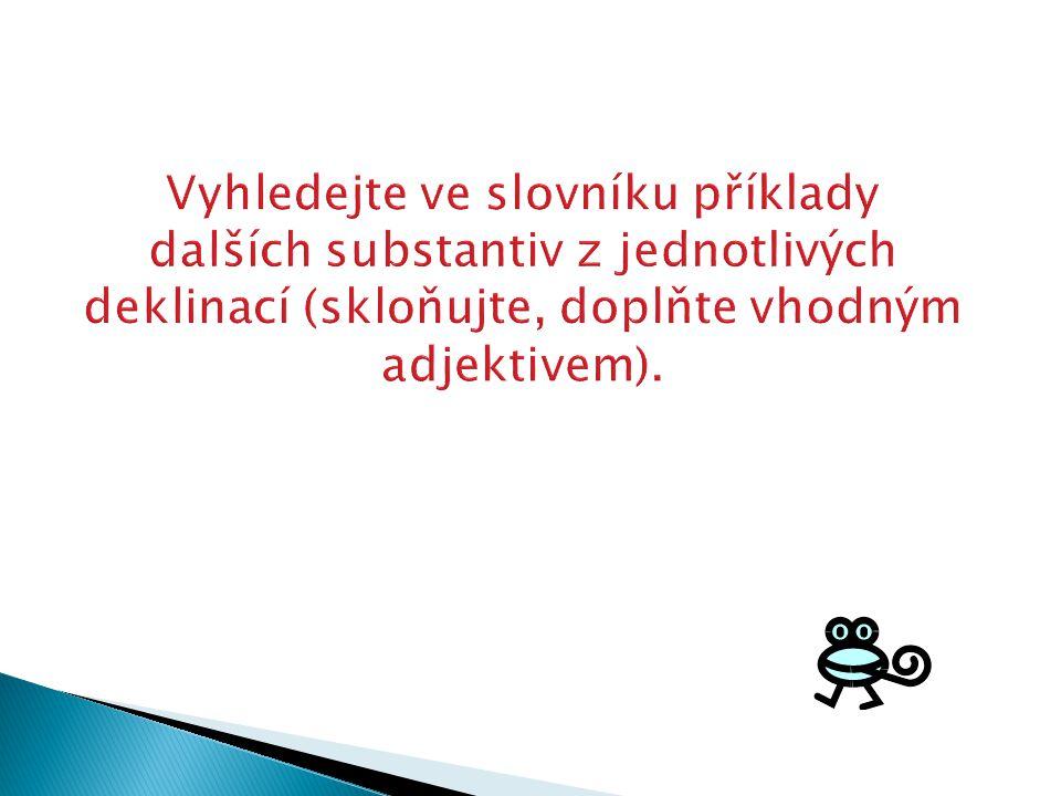 Vyhledejte ve slovníku příklady dalších substantiv z jednotlivých deklinací (skloňujte, doplňte vhodným adjektivem).