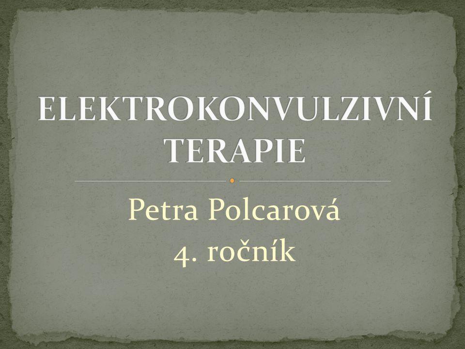Petra Polcarová 4. ročník