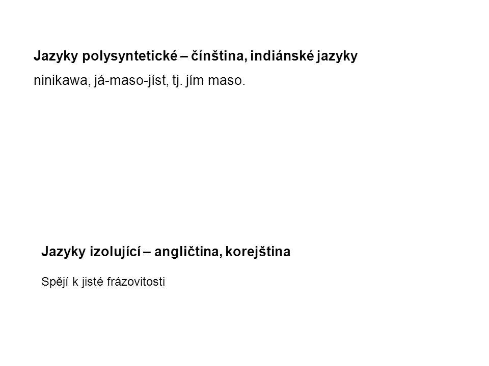 Jazyky polysyntetické – čínština, indiánské jazyky ninikawa, já-maso-jíst, tj. jím maso. Jazyky izolující – angličtina, korejština Spějí k jisté frázo