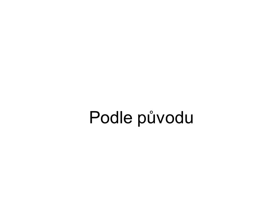 Žádný jazyk není čistý typ Čeština Analytický – jsem dělal, budu dělat Syntetický – muž – muže- muži Introflexivní – přítel – přátel Aglutinační - by+ch+om