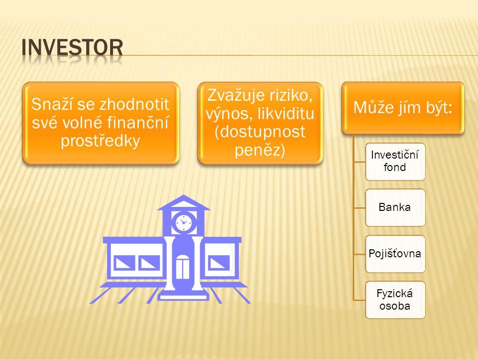 Snaží se zhodnotit své volné finanční prostředky Zvažuje riziko, výnos, likviditu (dostupnost peněz) Může jím být: Investiční fond BankaPojišťovna Fyzická osoba