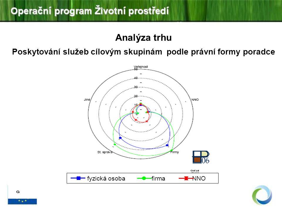 Analýza trhu Poskytování služeb cílovým skupinám podle právní formy poradce fyzická osoba firma NNO