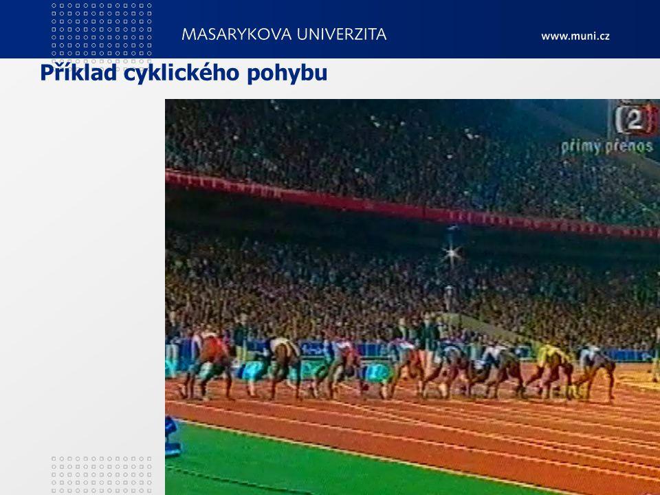 Příklad cyklického pohybu 2. Teorie tělesných cvičení11