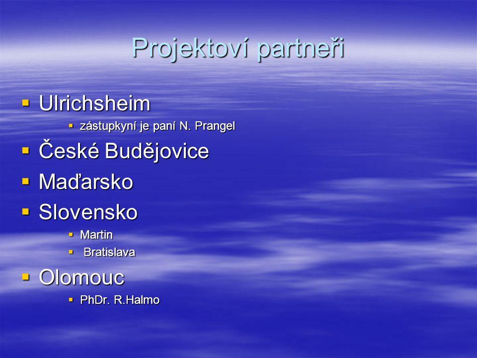 Projektoví partneři  Ulrichsheim  zástupkyní je paní N.