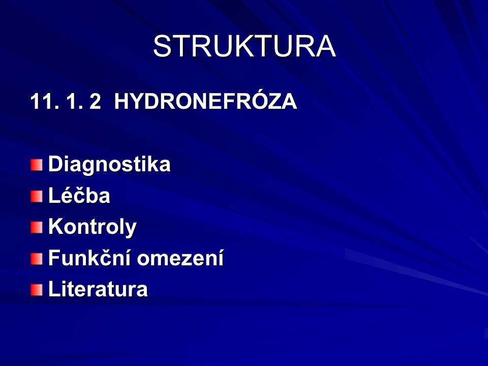 STRUKTURA 11. 1. 2 HYDRONEFRÓZA DiagnostikaLéčbaKontroly Funkční omezení Literatura