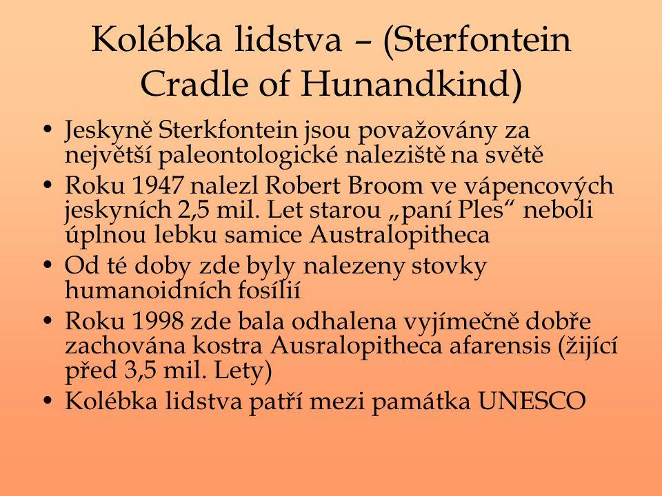 Kolébka lidstva – (Sterfontein Cradle of Hunandkind ) Jeskyně Sterkfontein jsou považovány za největší paleontologické naleziště na světě Roku 1947 na