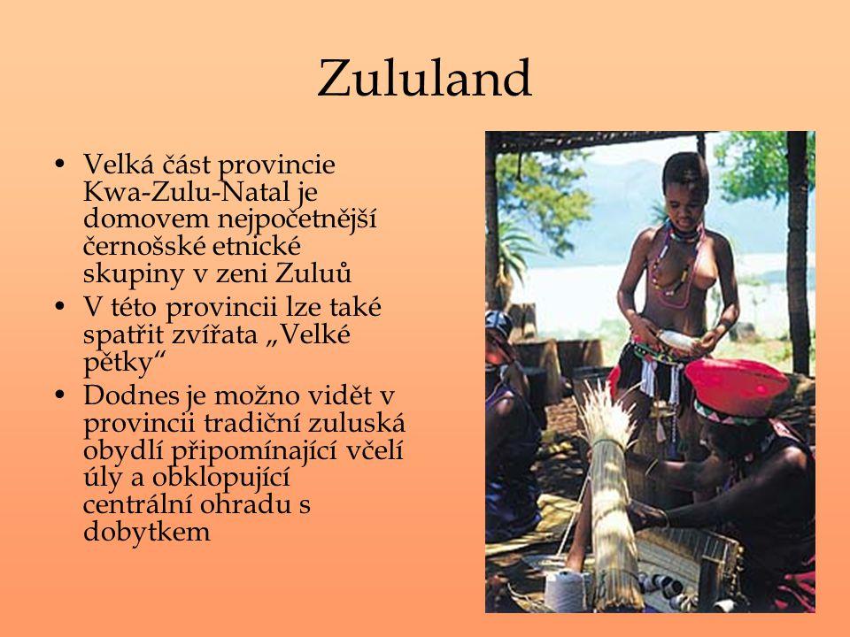 Zululand Velká část provincie Kwa-Zulu-Natal je domovem nejpočetnější černošské etnické skupiny v zeni Zuluů V této provincii lze také spatřit zvířata