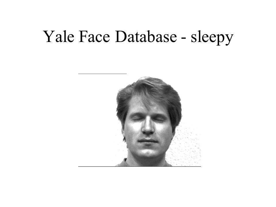 Yale Face Database - sleepy