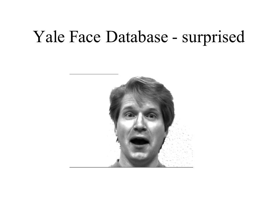 Yale Face Database - surprised