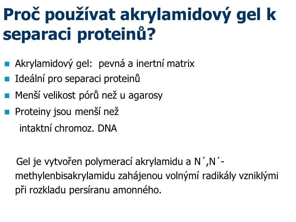 Proč používat akrylamidový gel k separaci proteinů.