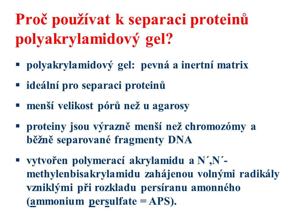 Proč používat k separaci proteinů polyakrylamidový gel?  polyakrylamidový gel: pevná a inertní matrix  ideální pro separaci proteinů  menší velikos