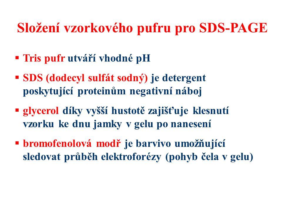 Složení vzorkového pufru pro SDS-PAGE  Tris pufr utváří vhodné pH  SDS (dodecyl sulfát sodný) je detergent poskytující proteinům negativní náboj  g