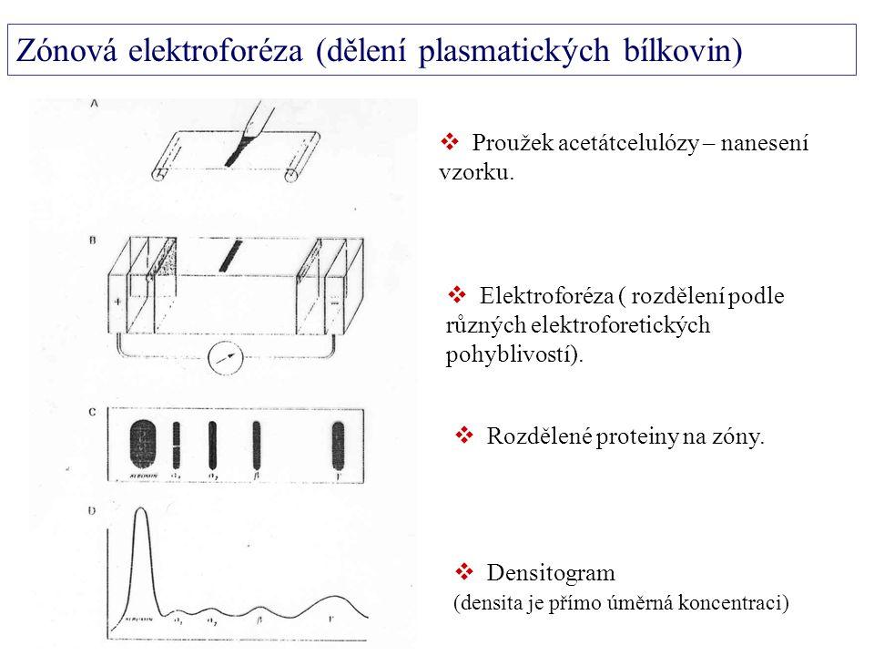  Proužek acetátcelulózy – nanesení vzorku.