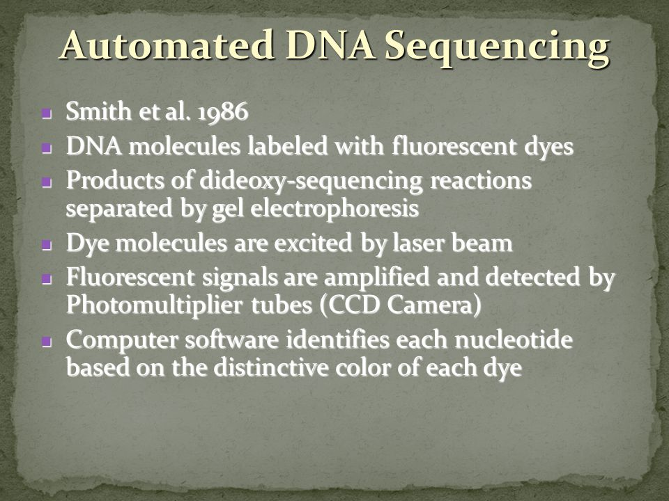 Automated DNA Sequencing Smith et al. 1986 Smith et al. 1986 DNA molecules labeled with fluorescent dyes DNA molecules labeled with fluorescent dyes P