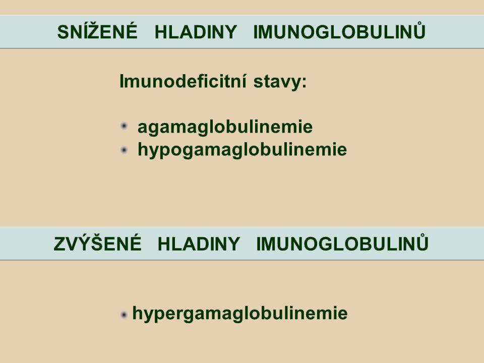 Imunodeficitní stavy: agamaglobulinemie hypogamaglobulinemie SNÍŽENÉ HLADINY IMUNOGLOBULINŮ ZVÝŠENÉ HLADINY IMUNOGLOBULINŮ hypergamaglobulinemie