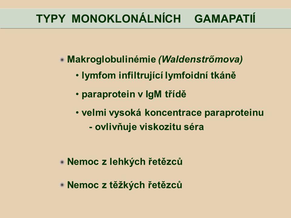 Makroglobulinémie (Waldenstrőmova) lymfom infiltrující lymfoidní tkáně paraprotein v IgM třídě velmi vysoká koncentrace paraproteinu - ovlivňuje visko